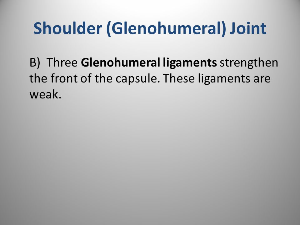Shoulder (Glenohumeral) Joint B) Three Glenohumeral ligaments strengthen the front of the capsule.