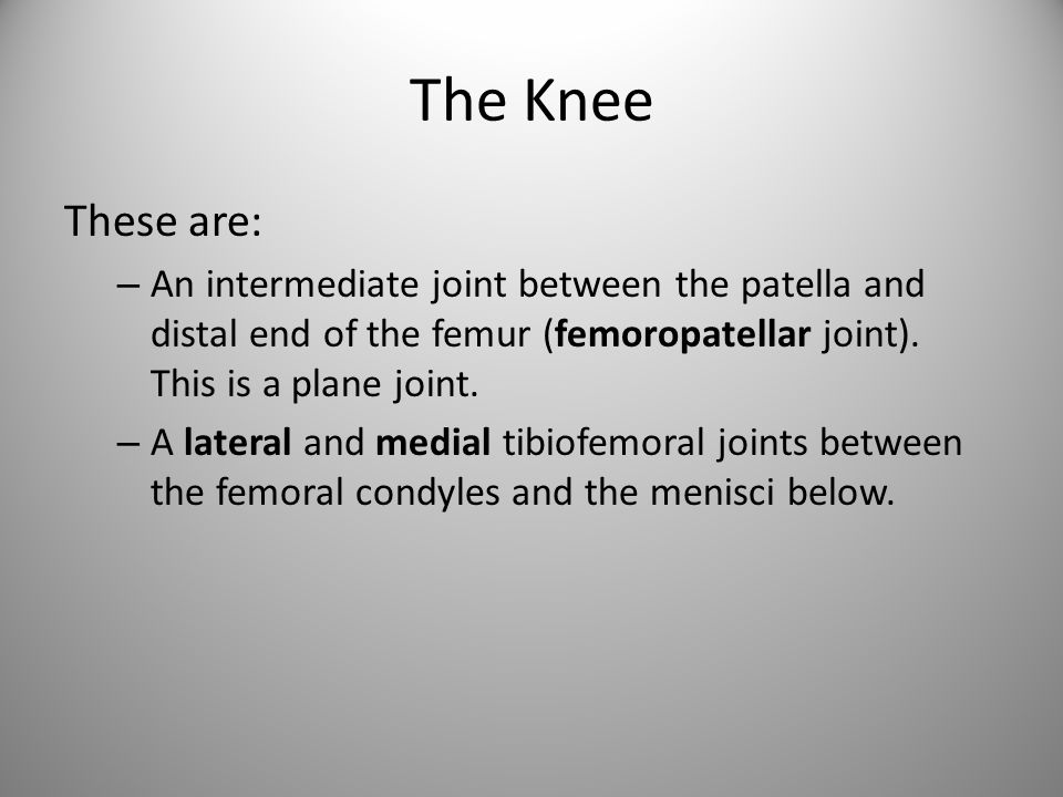 The Knee These are: – An intermediate joint between the patella and distal end of the femur (femoropatellar joint).
