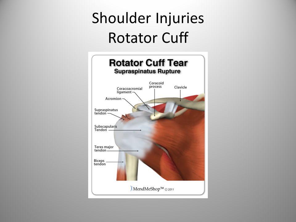 Shoulder Injuries Rotator Cuff