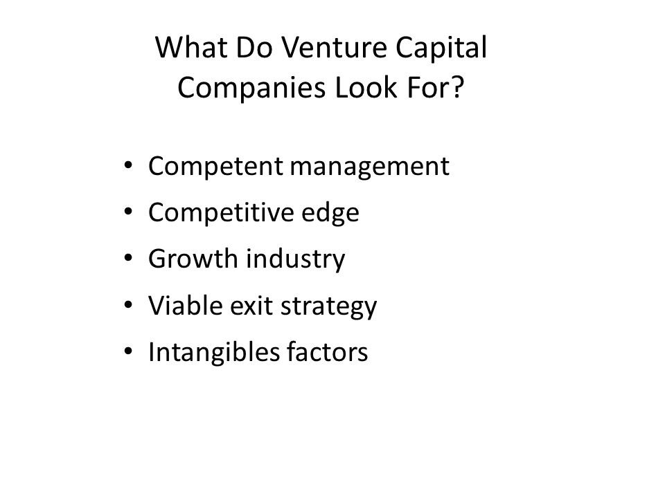 What Do Venture Capital Companies Look For.