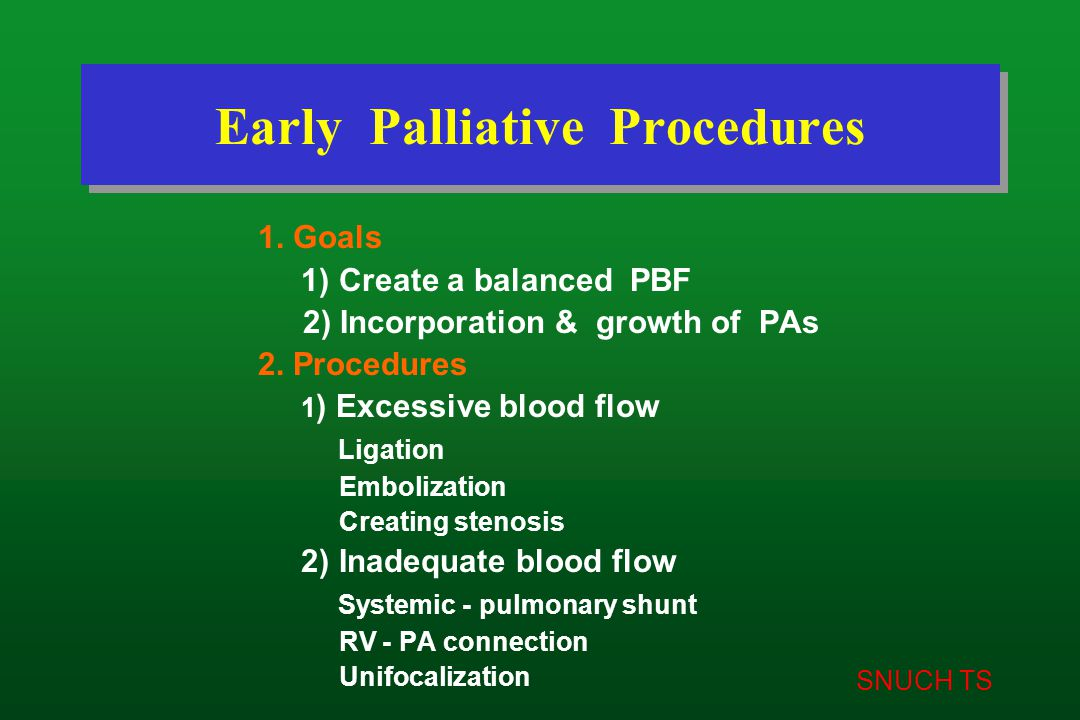 SNUCH TS Early Palliative Procedures 1. Goals 1) Create a balanced PBF 2) Incorporation & growth of PAs 2. Procedures 1 ) Excessive blood flow Ligatio