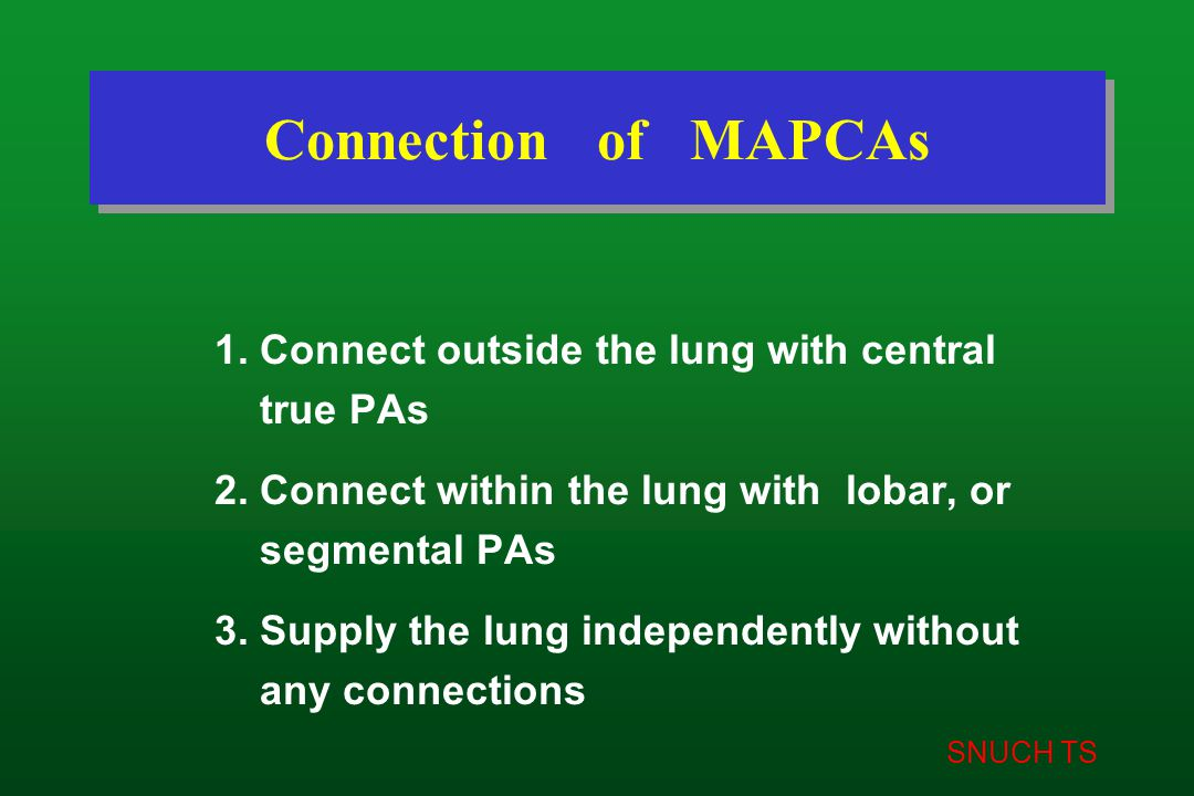 SNUCH TS Connection of MAPCAs 1. Connect outside the lung with central true PAs 2. Connect within the lung with lobar, or segmental PAs 3. Supply the