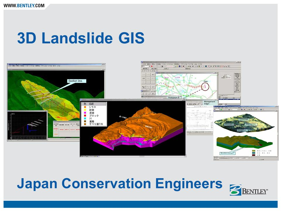 3D Landslide GIS Japan Conservation Engineers