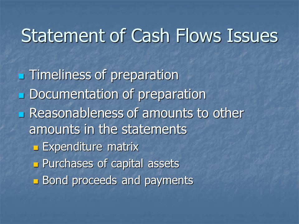 Statement of Cash Flows Issues Timeliness of preparation Timeliness of preparation Documentation of preparation Documentation of preparation Reasonableness of amounts to other amounts in the statements Reasonableness of amounts to other amounts in the statements Expenditure matrix Expenditure matrix Purchases of capital assets Purchases of capital assets Bond proceeds and payments Bond proceeds and payments