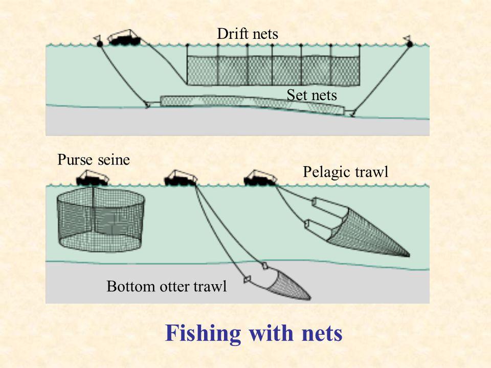 Drift nets Set nets Pelagic trawl Purse seine Bottom otter trawl Fishing with nets