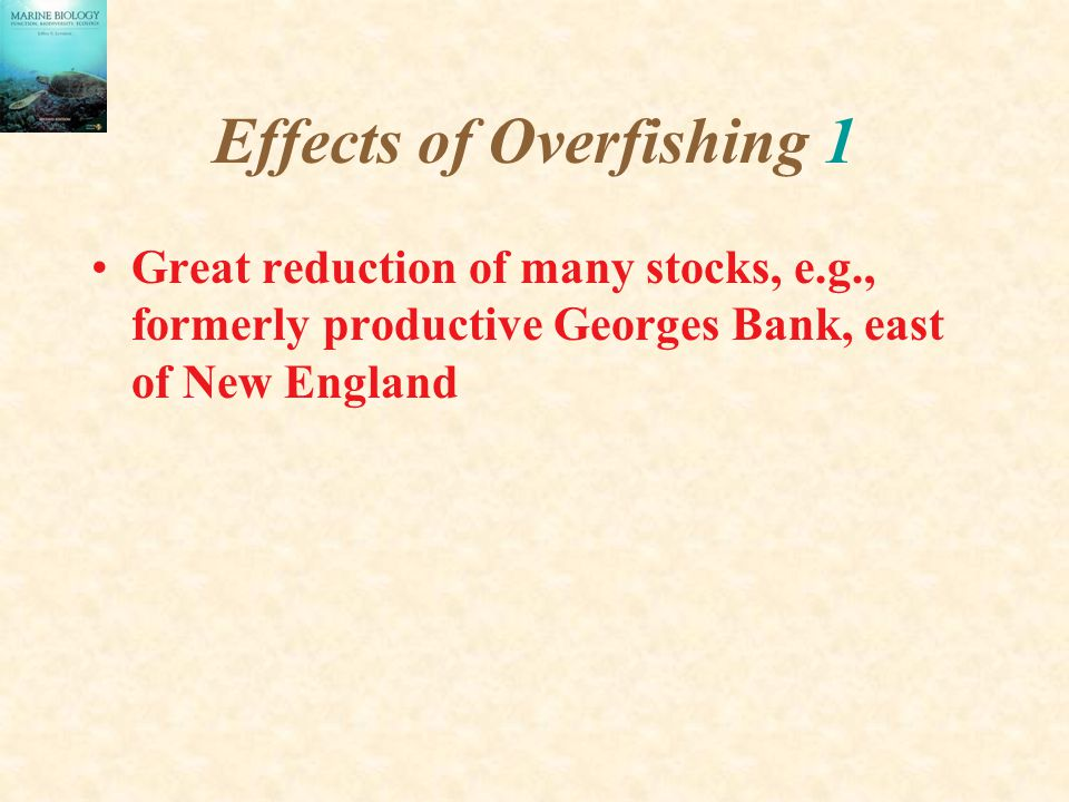 Effects of Overfishing 1 Great reduction of many stocks, e.g., formerly productive Georges Bank, east of New England