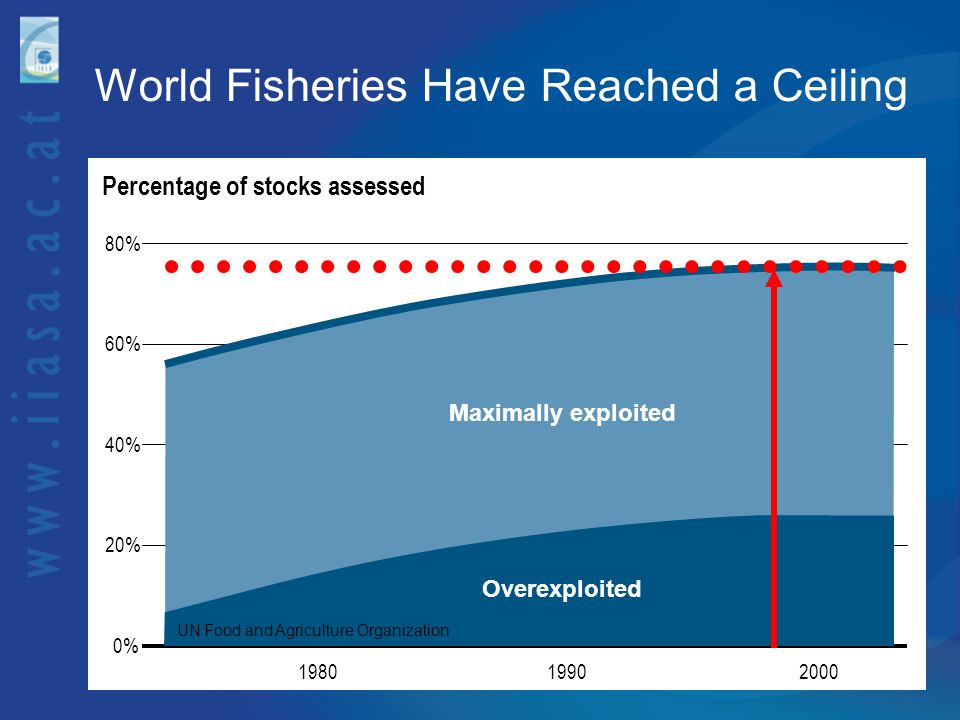 0100 Time (years) Currentfishing Age at maturation (years) 12 10 8 6 4 2 0 Historicalfishing Model of Northeast Arctic cod Fast Pace of Evolutionary Decline ca.