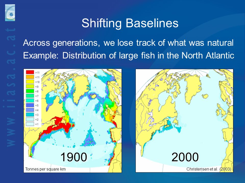 Shifting Baselines Across generations, we lose track of what was natural Example: Distribution of large fish in the North Atlantic Tonnes per square k