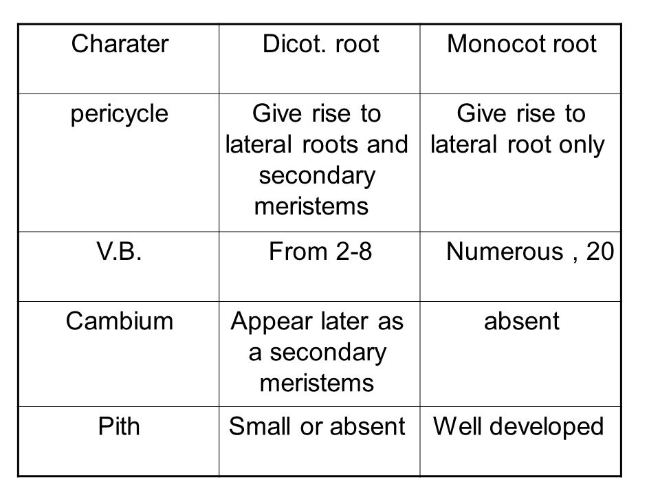 Monocot rootDicot. rootCharater Give rise to lateral root only Give rise to lateral roots and secondary meristems pericycle Numerous, 20From 2-8V.B. a