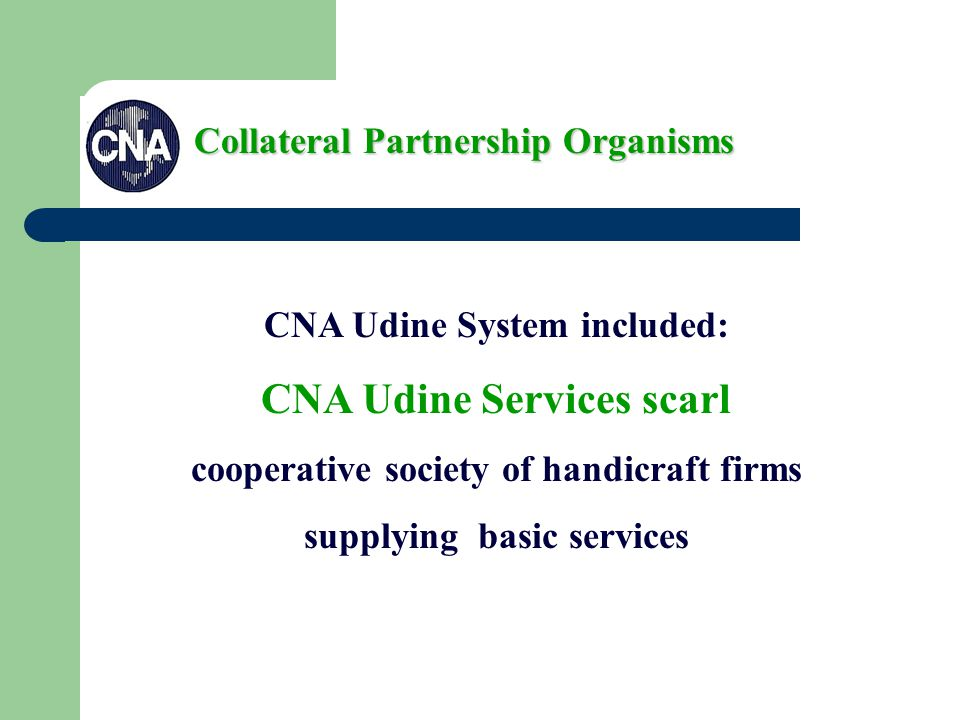 CNA Udine System included: CNA Udine Services scarl cooperative society of handicraft firms supplying basic services Collateral Partnership Organisms