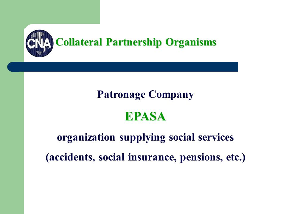 Patronage CompanyEPASA organization supplying social services (accidents, social insurance, pensions, etc.) Collateral Partnership Organisms