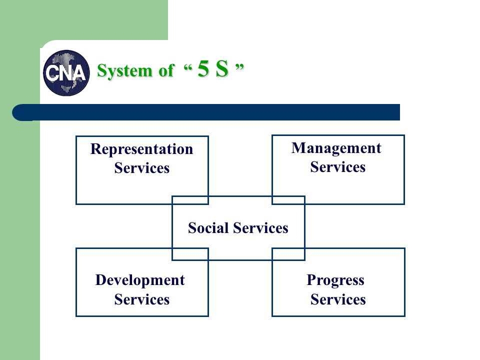 System of 5 S Representation Services Management Services Social Services Development Services Progress Services