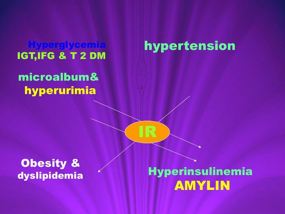 Hyperglycemia IGT,IFG & T 2 DM hypertension microalbum& hyperurimia IR Obesity & dyslipidemia IR Hyperinsulinemia AMYLIN