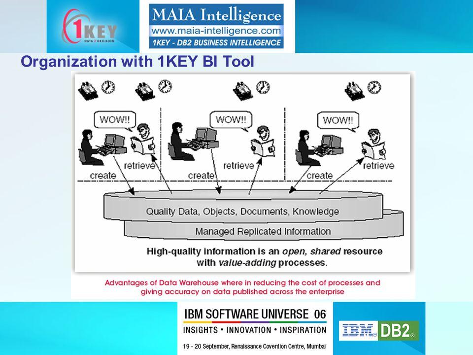 Organization with 1KEY BI Tool