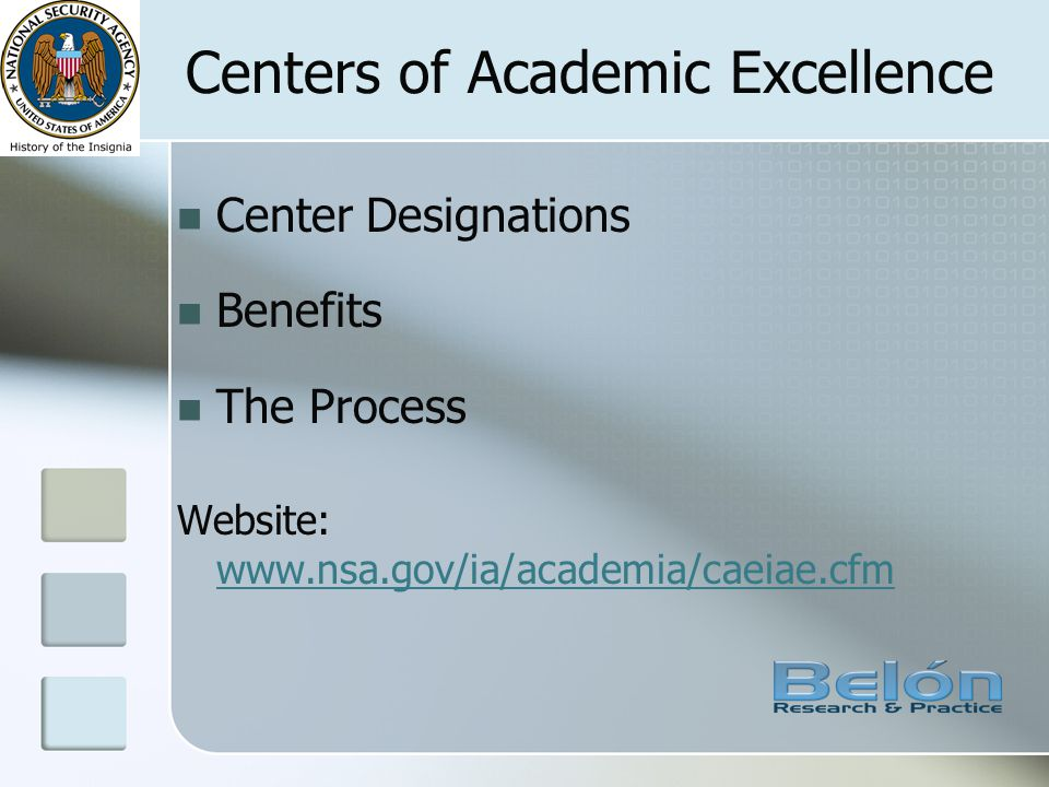 Centers of Academic Excellence Center Designations Benefits The Process Website: www.nsa.gov/ia/academia/caeiae.cfm www.nsa.gov/ia/academia/caeiae.cfm