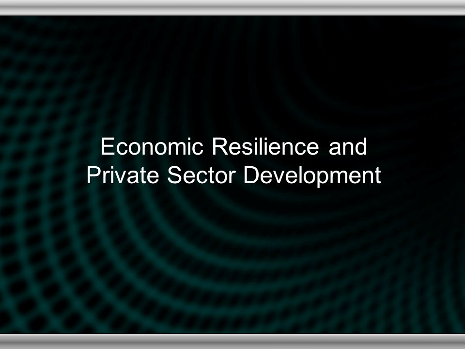 Economic Resilience and Private Sector Development