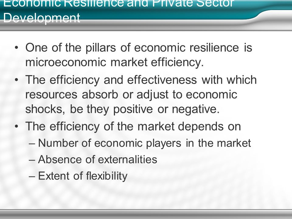 Economic Resilience and Private Sector Development One of the pillars of economic resilience is microeconomic market efficiency.