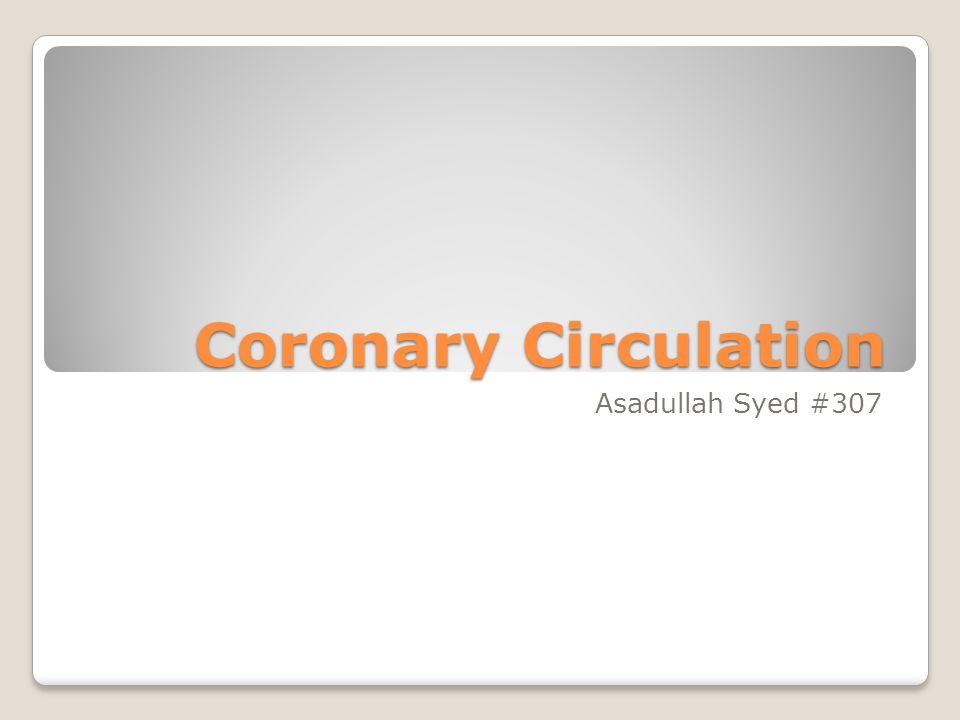 Coronary Circulation Asadullah Syed #307