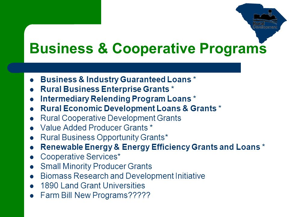 Business & Cooperative Programs Business & Industry Guaranteed Loans * Rural Business Enterprise Grants * Intermediary Relending Program Loans * Rural Economic Development Loans & Grants * Rural Cooperative Development Grants Value Added Producer Grants * Rural Business Opportunity Grants* Renewable Energy & Energy Efficiency Grants and Loans * Cooperative Services* Small Minority Producer Grants Biomass Research and Development Initiative 1890 Land Grant Universities Farm Bill New Programs