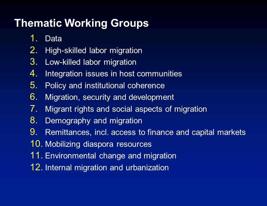 Thematic Working Groups 1.Data 2. High-skilled labor migration 3.