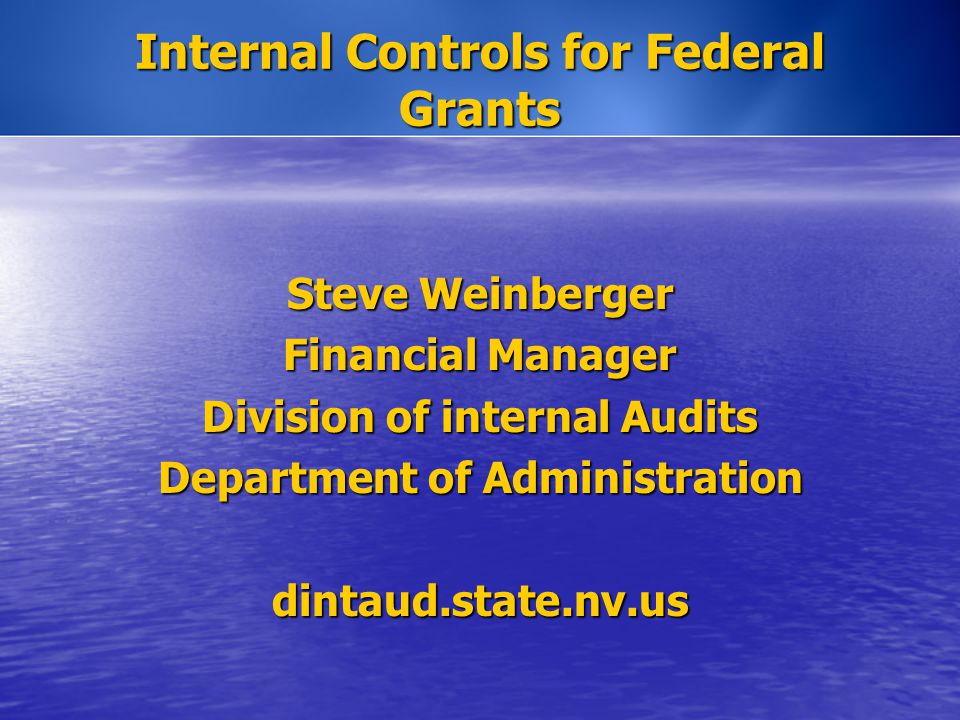 Steve Weinberger Financial Manager Division of internal Audits Department of Administration dintaud.state.nv.us