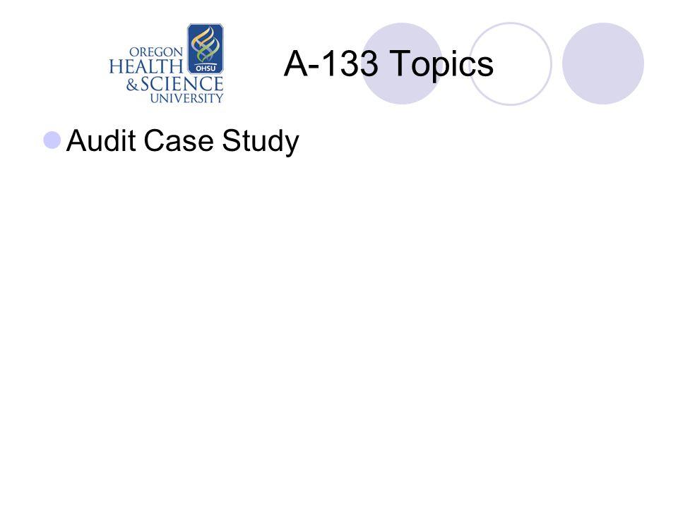 A-133 Topics Audit Case Study