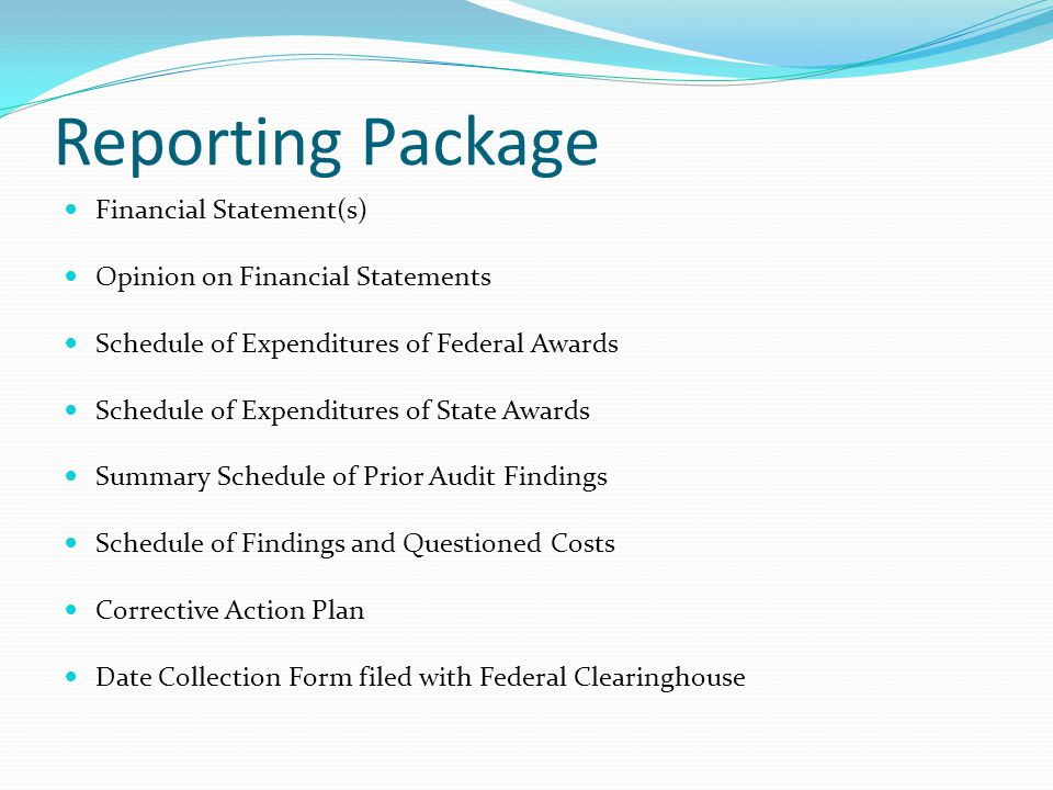 Reporting Package Financial Statement(s) Opinion on Financial Statements Schedule of Expenditures of Federal Awards Schedule of Expenditures of State Awards Summary Schedule of Prior Audit Findings Schedule of Findings and Questioned Costs Corrective Action Plan Date Collection Form filed with Federal Clearinghouse
