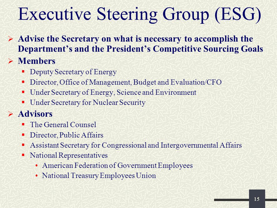 15 Executive Steering Group (ESG)  Advise the Secretary on what is necessary to accomplish the Department's and the President's Competitive Sourcing Goals  Members  Deputy Secretary of Energy  Director, Office of Management, Budget and Evaluation/CFO  Under Secretary of Energy, Science and Environment  Under Secretary for Nuclear Security  Advisors  The General Counsel  Director, Public Affairs  Assistant Secretary for Congressional and Intergovernmental Affairs  National Representatives American Federation of Government Employees National Treasury Employees Union