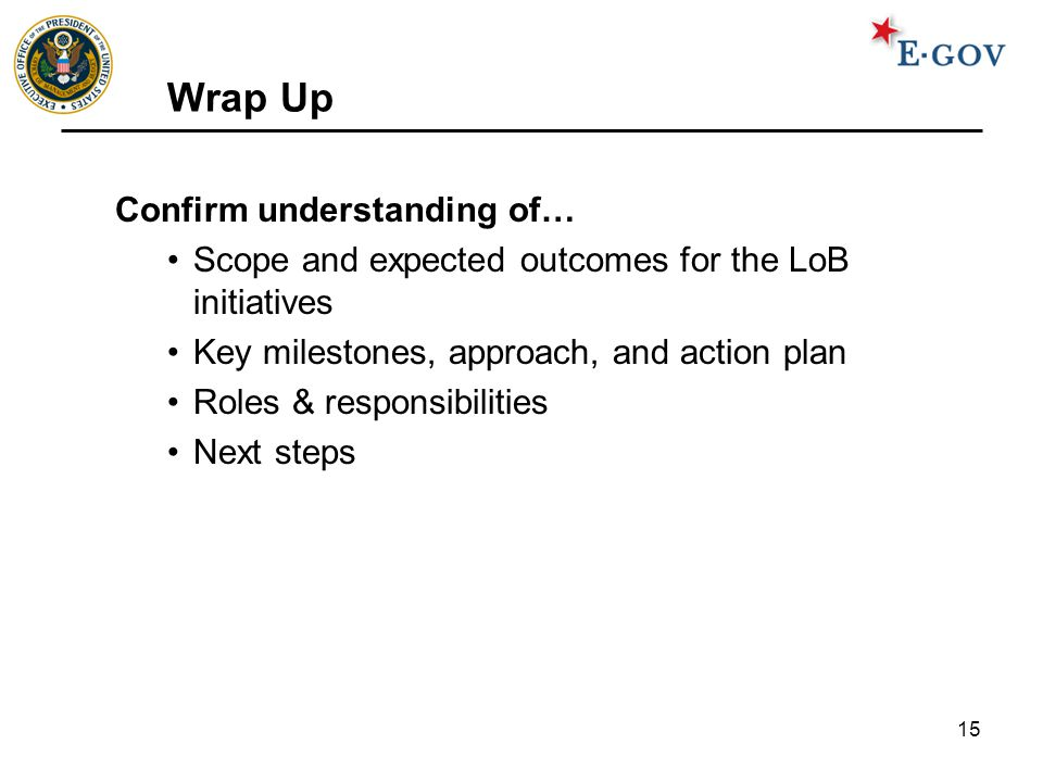 15 Wrap Up Confirm understanding of… Scope and expected outcomes for the LoB initiatives Key milestones, approach, and action plan Roles & responsibil