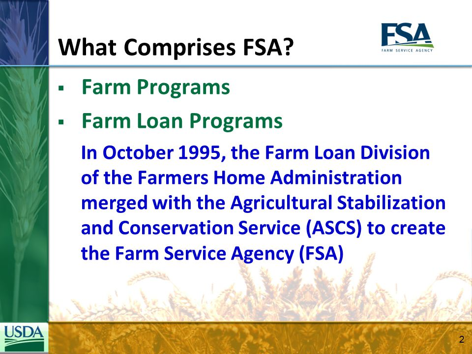 Over 40 Programs & Services Available: Ag Mediation Dairy Programs NAP Coverage CRP GRP Commodity Loans Farm Loans SURE BCAP ACRE Disaster Programs Farm Storage Facility Loans County Committees Beginner Farmer Loans CREP Direct and Counter- cyclical Program Direct Operating Loans Emergency Conservation Programs ELAP Guaranteed Operating Loans Livestock Indemnity Program MILC Program Commodity Loans Tobacco Transition TAP 3