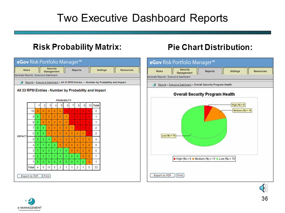 35 Reports Tab Functionality The Reports Tab contains two submenus:  Report Generation, which contains eleven types of reports having varying degrees of detail  The Executive Dashboard, which contains several graphical depictions of risk data meant for summarizing risk status for management