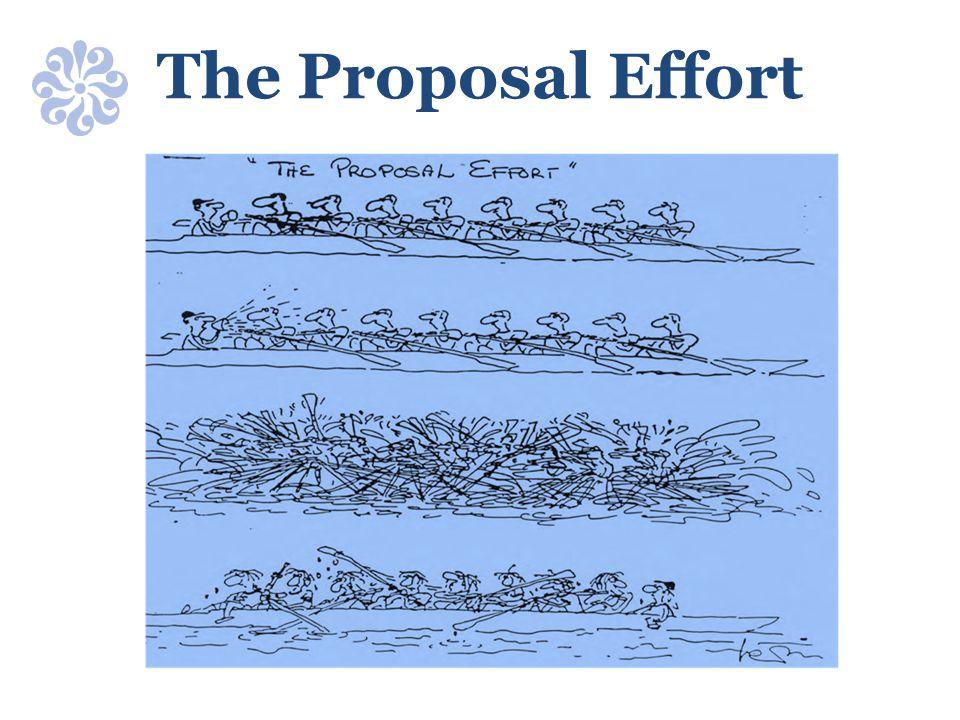 The Proposal Effort