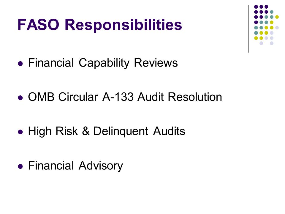 FASO Responsibilities Financial Capability Reviews OMB Circular A-133 Audit Resolution High Risk & Delinquent Audits Financial Advisory