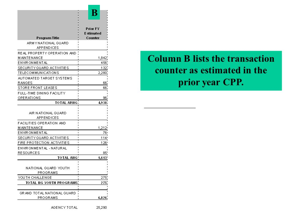 Column B lists the transaction counter as estimated in the prior year CPP. B