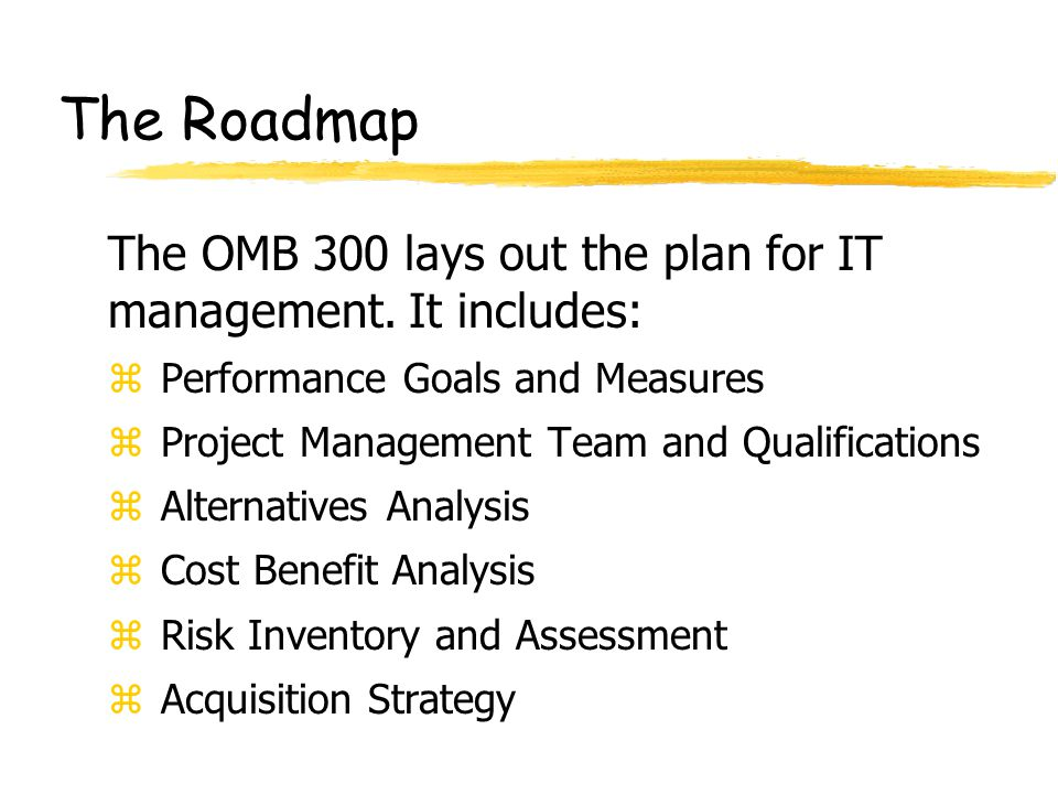 The Roadmap z Performance Goals and Measures z Project Management Team and Qualifications z Alternatives Analysis z Cost Benefit Analysis z Risk Inventory and Assessment z Acquisition Strategy The OMB 300 lays out the plan for IT management.