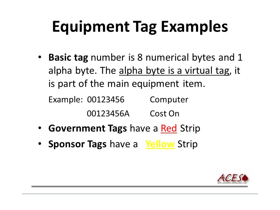 Equipment Tag Examples Basic tag number is 8 numerical bytes and 1 alpha byte.