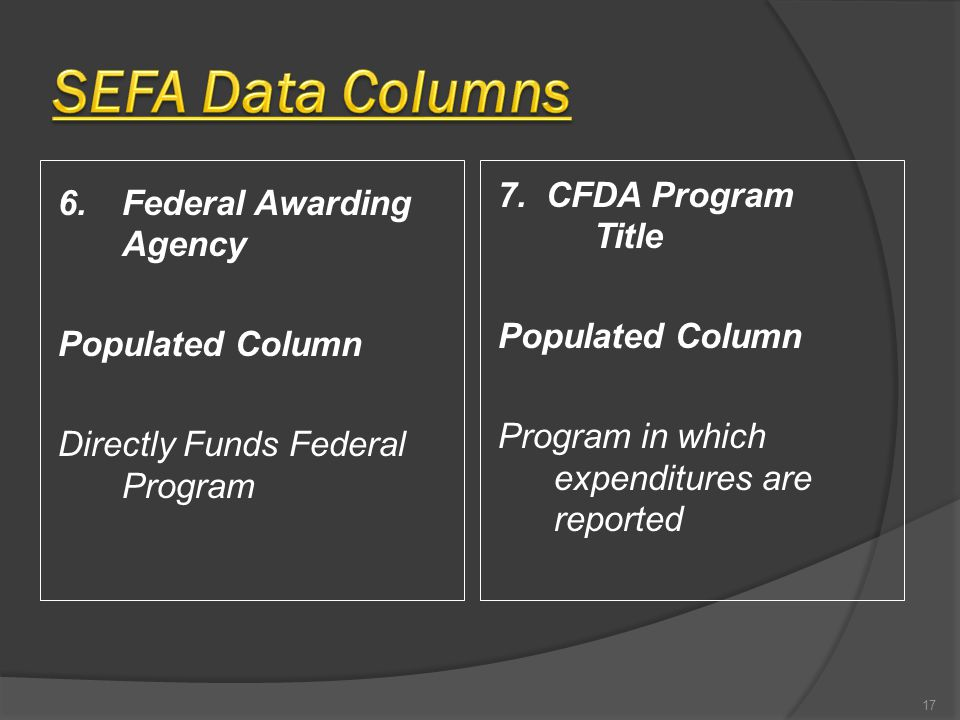 6.Federal Awarding Agency Populated Column Directly Funds Federal Program 7. CFDA Program Title Populated Column Program in which expenditures are rep