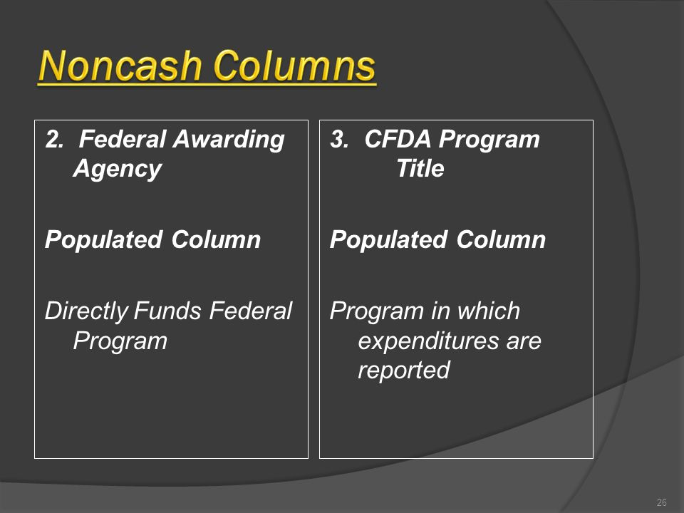 2. Federal Awarding Agency Populated Column Directly Funds Federal Program 3. CFDA Program Title Populated Column Program in which expenditures are re