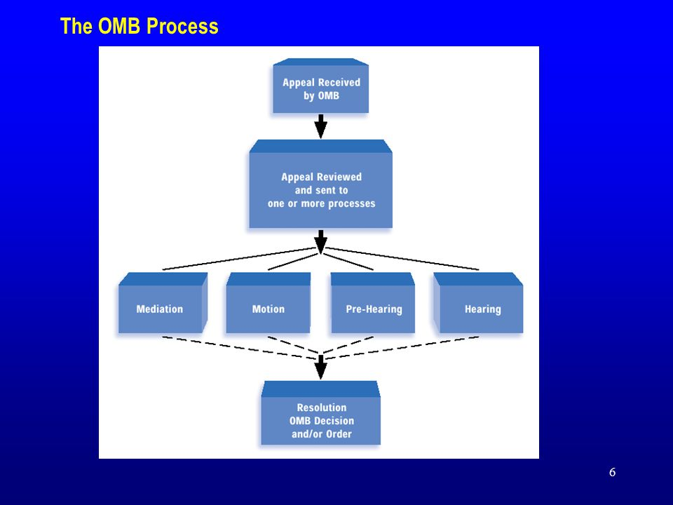 6 The OMB Process