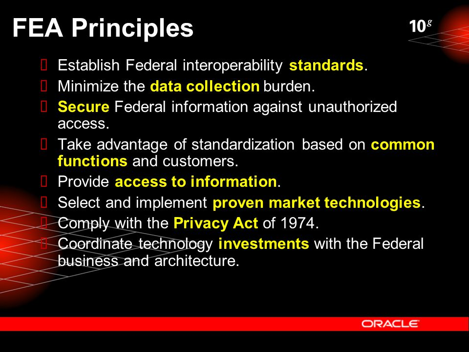 FEA Principles  Establish Federal interoperability standards.  Minimize the data collection burden.  Secure Federal information against unauthorize