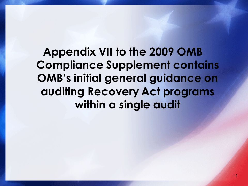 Appendix VII to the 2009 OMB Compliance Supplement contains OMB's initial general guidance on auditing Recovery Act programs within a single audit 14