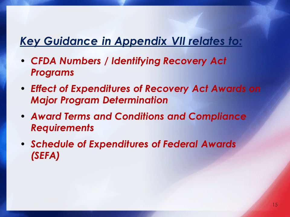 Key Guidance in Appendix VII relates to: CFDA Numbers / Identifying Recovery Act Programs Effect of Expenditures of Recovery Act Awards on Major Program Determination Award Terms and Conditions and Compliance Requirements Schedule of Expenditures of Federal Awards (SEFA) 15