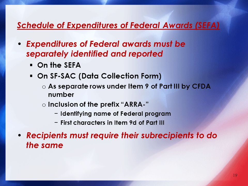 Schedule of Expenditures of Federal Awards (SEFA) Expenditures of Federal awards must be separately identified and reported  On the SEFA  On SF-SAC (Data Collection Form) o As separate rows under Item 9 of Part III by CFDA number o Inclusion of the prefix ARRA- − Identifying name of Federal program − First characters in Item 9d of Part III Recipients must require their subrecipients to do the same 19