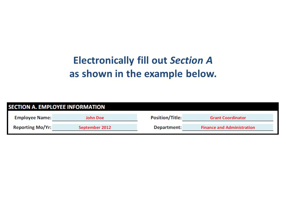 Electronically fill out Section A as shown in the example below.