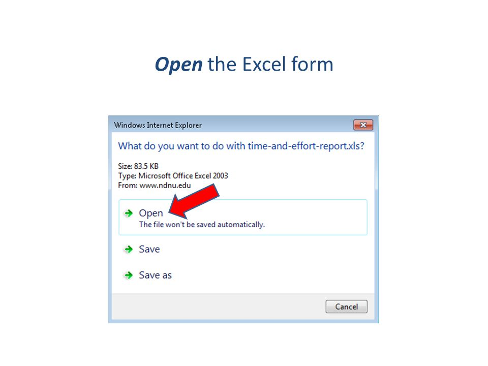 Open the Excel form