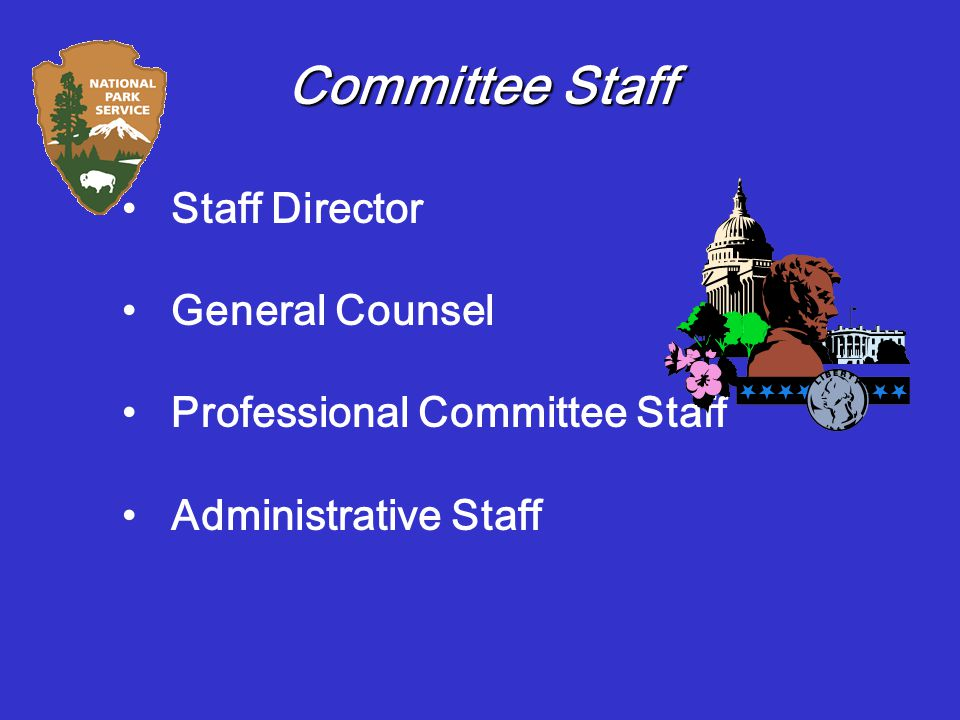 Committee Staff Staff Director General Counsel Professional Committee Staff Administrative Staff
