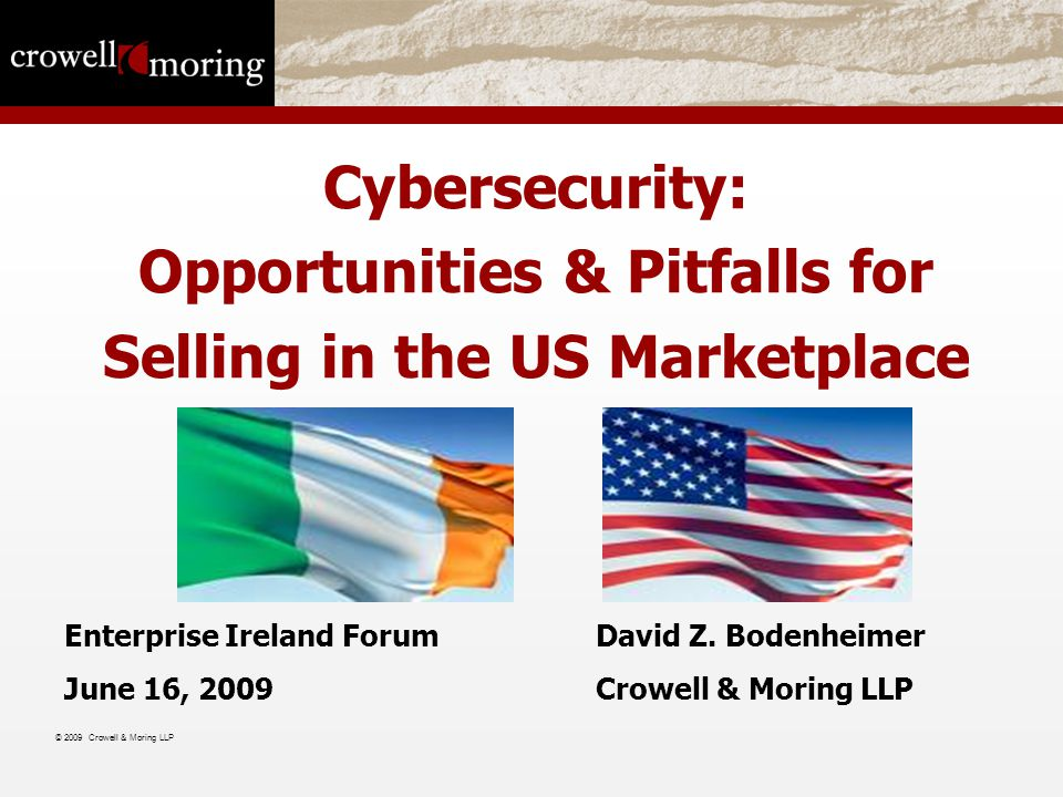 Cybersecurity: Opportunities & Pitfalls for Selling in the US Marketplace Enterprise Ireland ForumDavid Z.
