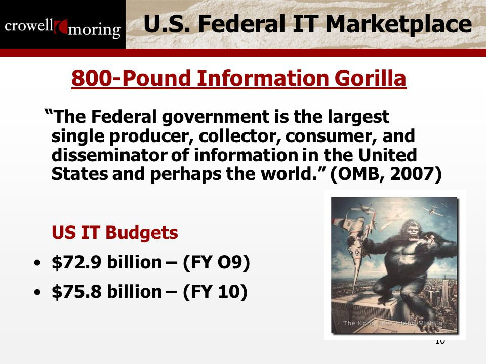 """10 U.S. Federal IT Marketplace 800-Pound Information Gorilla """" The Federal government is the largest single producer, collector, consumer, and dissemi"""