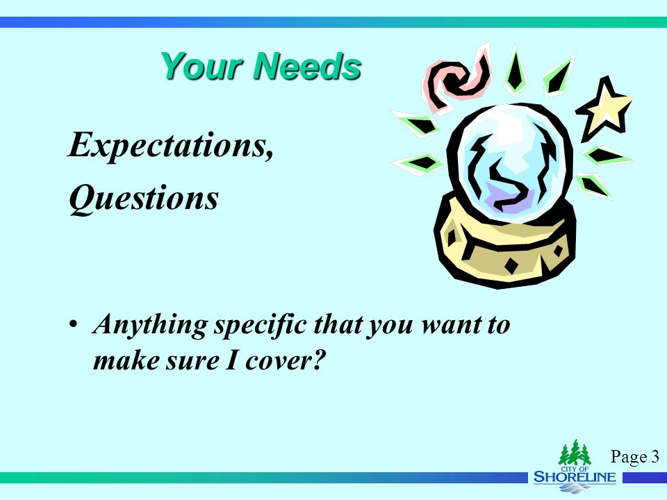 Page 3 Your Needs Expectations, Questions Anything specific that you want to make sure I cover?