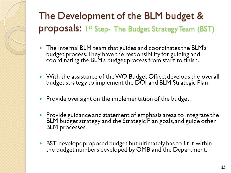 The Development of the BLM budget & proposals: 1 st Step- The Budget Strategy Team (BST) The internal BLM team that guides and coordinates the BLM's budget process.